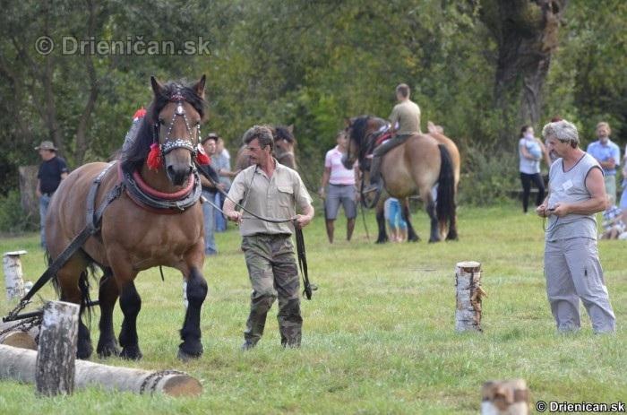 Furmanske preteky Zlaty Kantar Lutina 2012_135