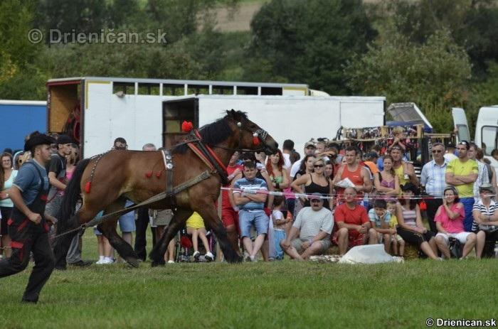 Furmanske preteky Zlaty Kantar Lutina 2012_158