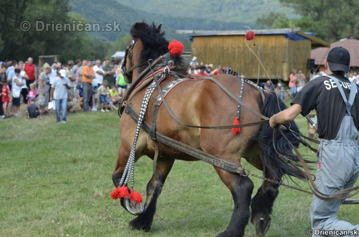 Furmanske preteky Zlaty Kantar Lutina 2012_160