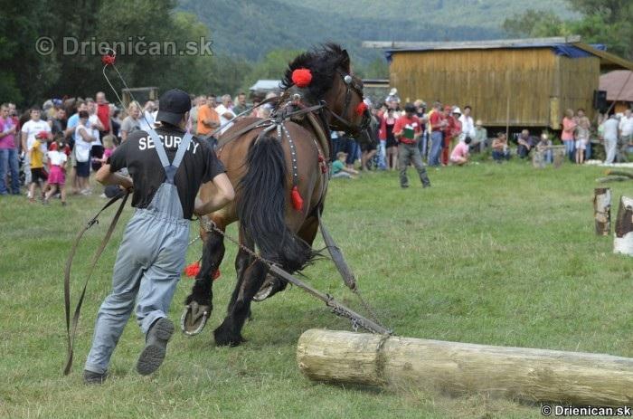 Furmanske preteky Zlaty Kantar Lutina 2012_161