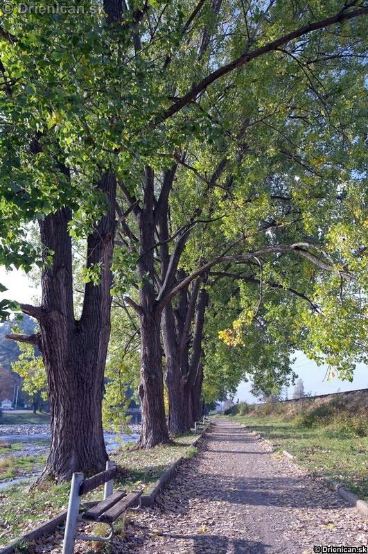 Večerná prechádzka popri rieke Torysa...