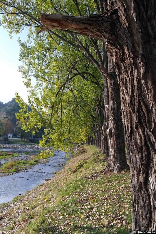 Ústie rieky Torysa, v pozadí Šanec.