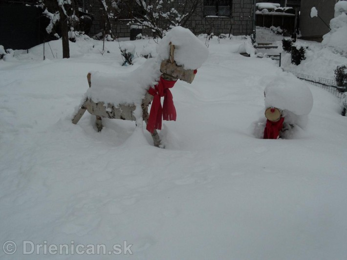 Srny na Snehu s cervenym salom_1