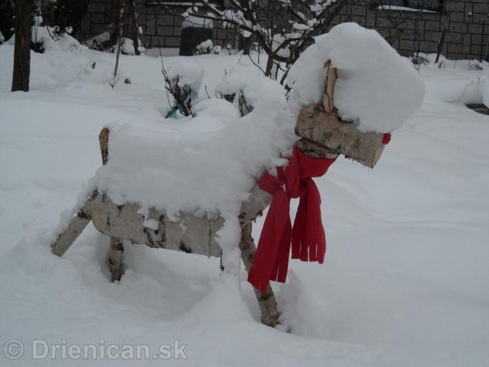 Srny na Snehu s cervenym salom_2