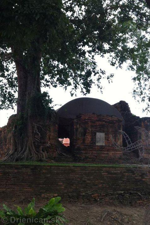 Wat Pho - Wat Phra Chettuphon Wimon Mangkhlaram_37