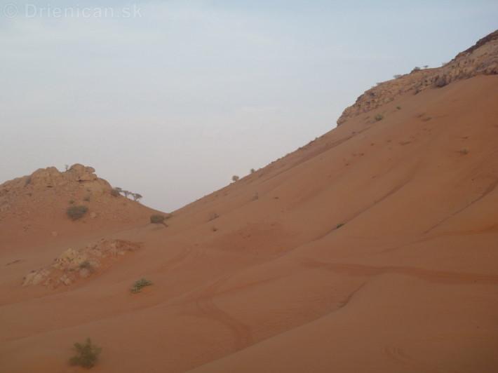 Dovolenka v Dubaji_129
