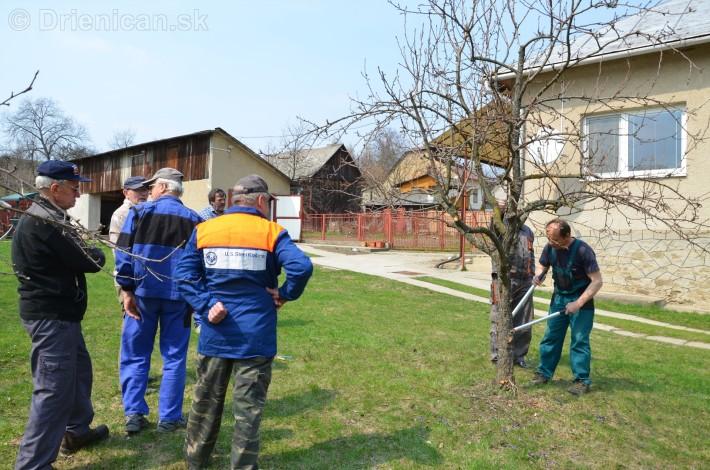 jarny rez ovocnych drevin zahradkari drienica_05