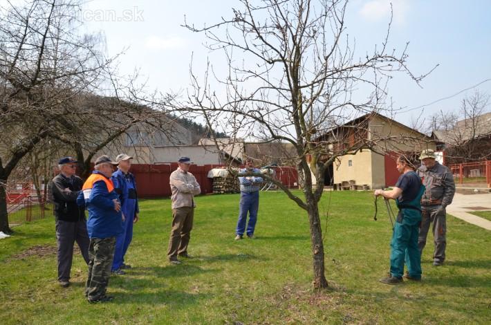 jarny rez ovocnych drevin zahradkari drienica_06