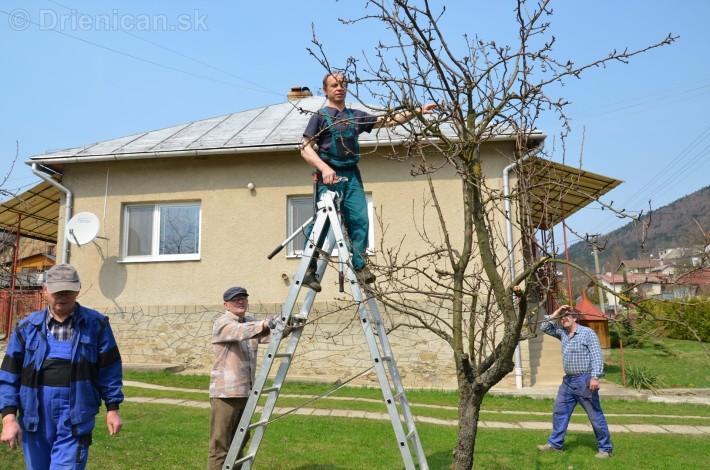 jarny rez ovocnych drevin zahradkari drienica_15