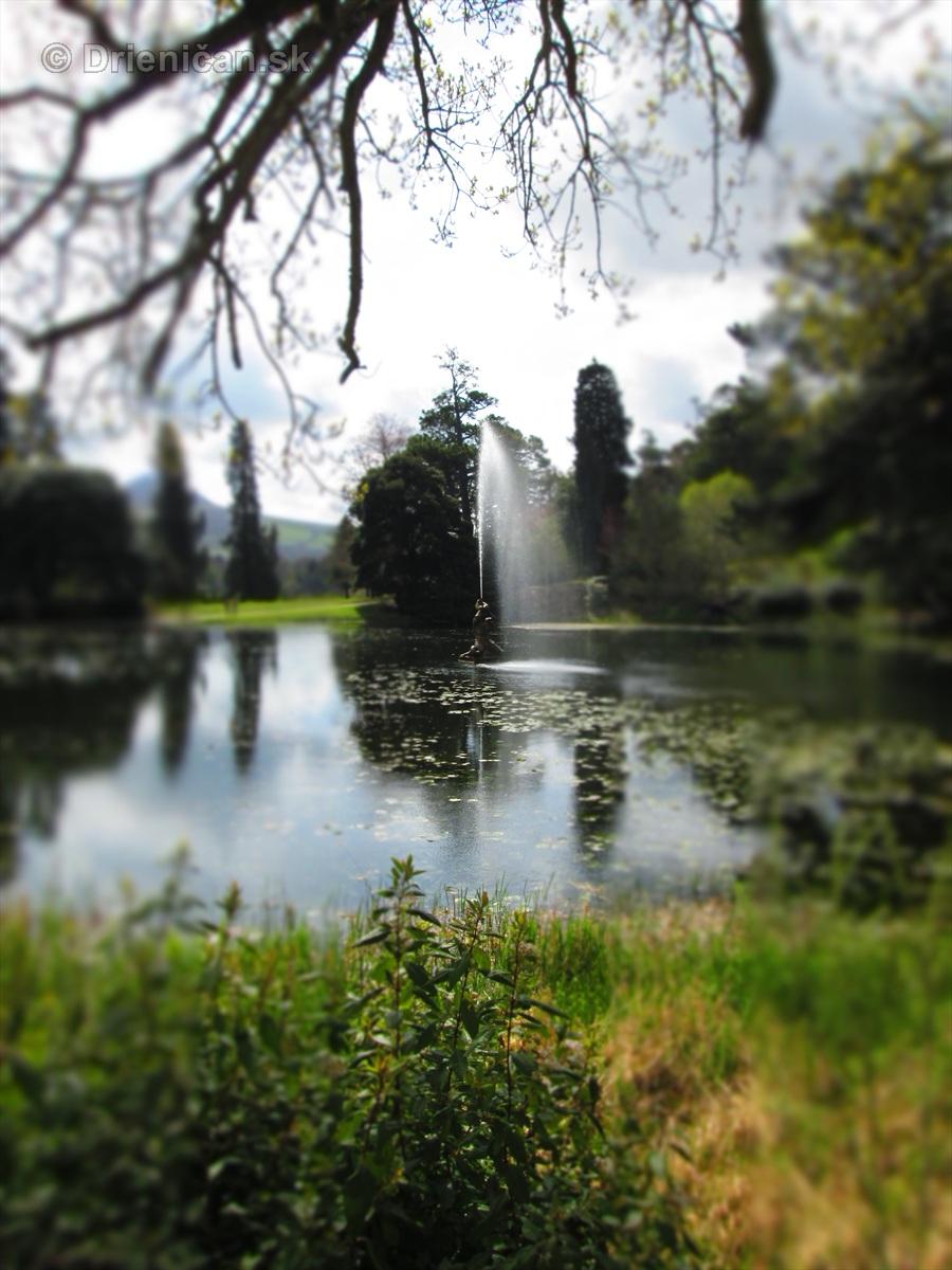 Spring in Powerscourt Gardens_11