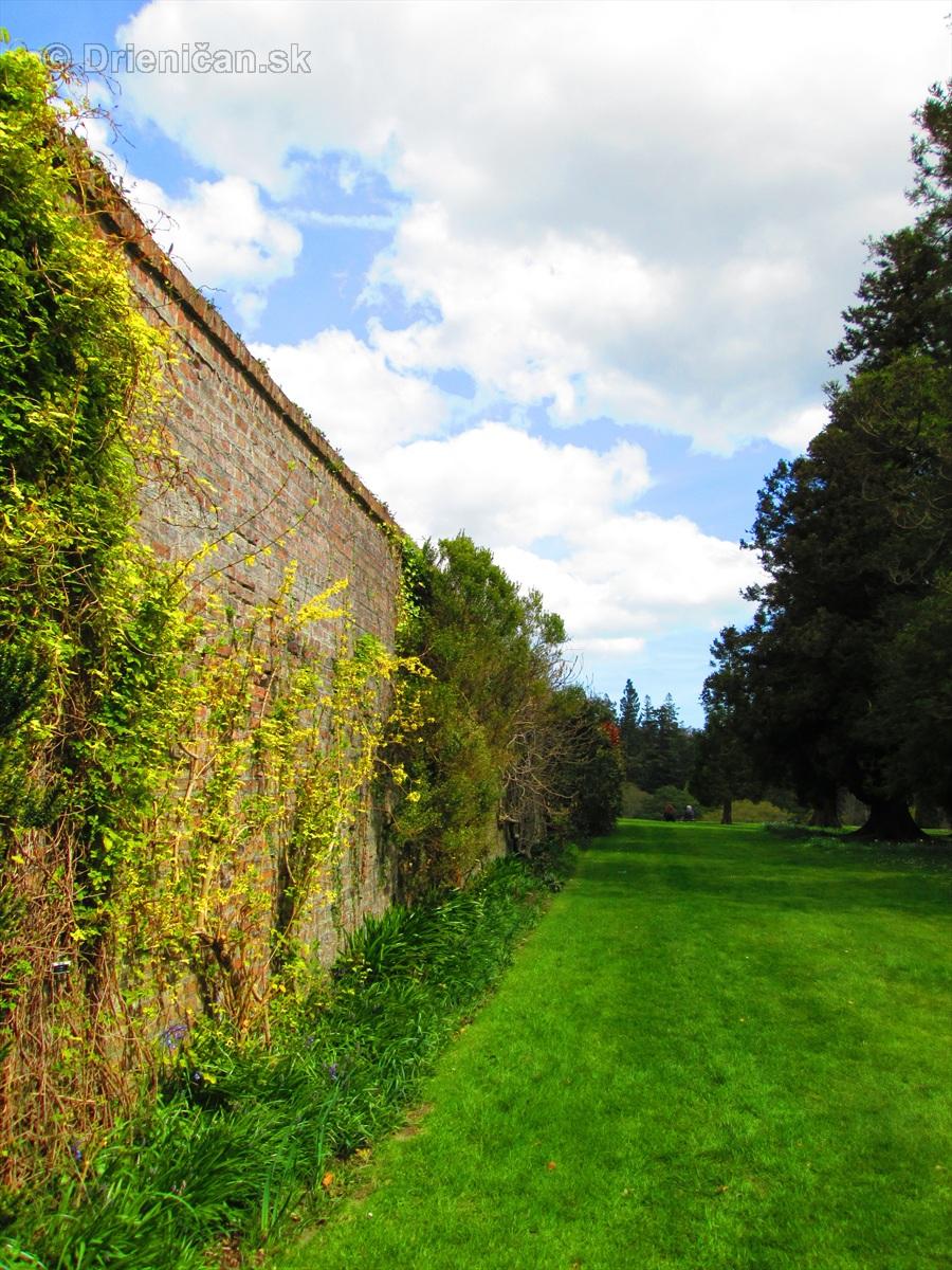 Spring in Powerscourt Gardens_42
