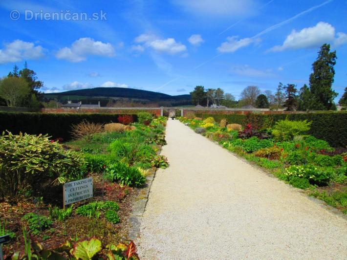 Spring in Powerscourt Gardens_43