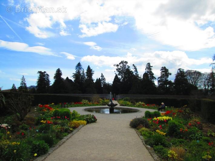 Spring in Powerscourt Gardens_56