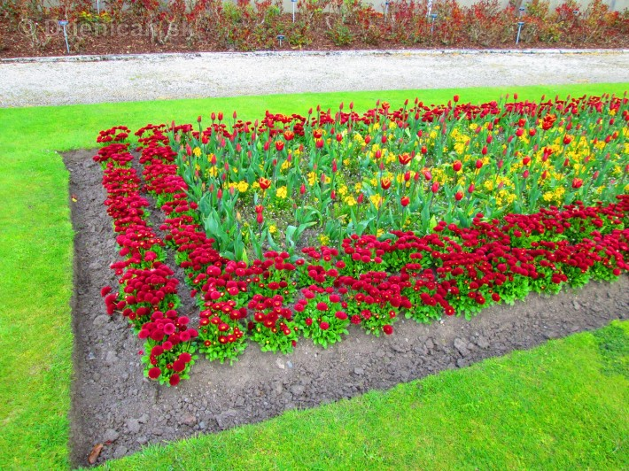 Spring in Powerscourt Gardens_60