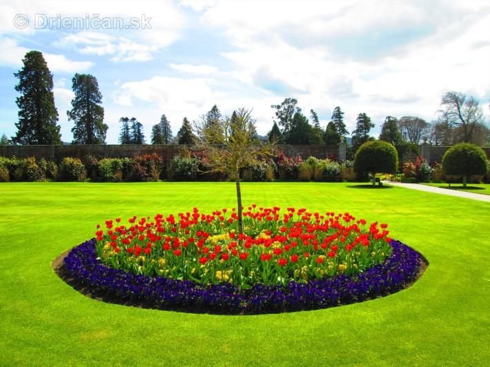 Spring in Powerscourt Gardens_62
