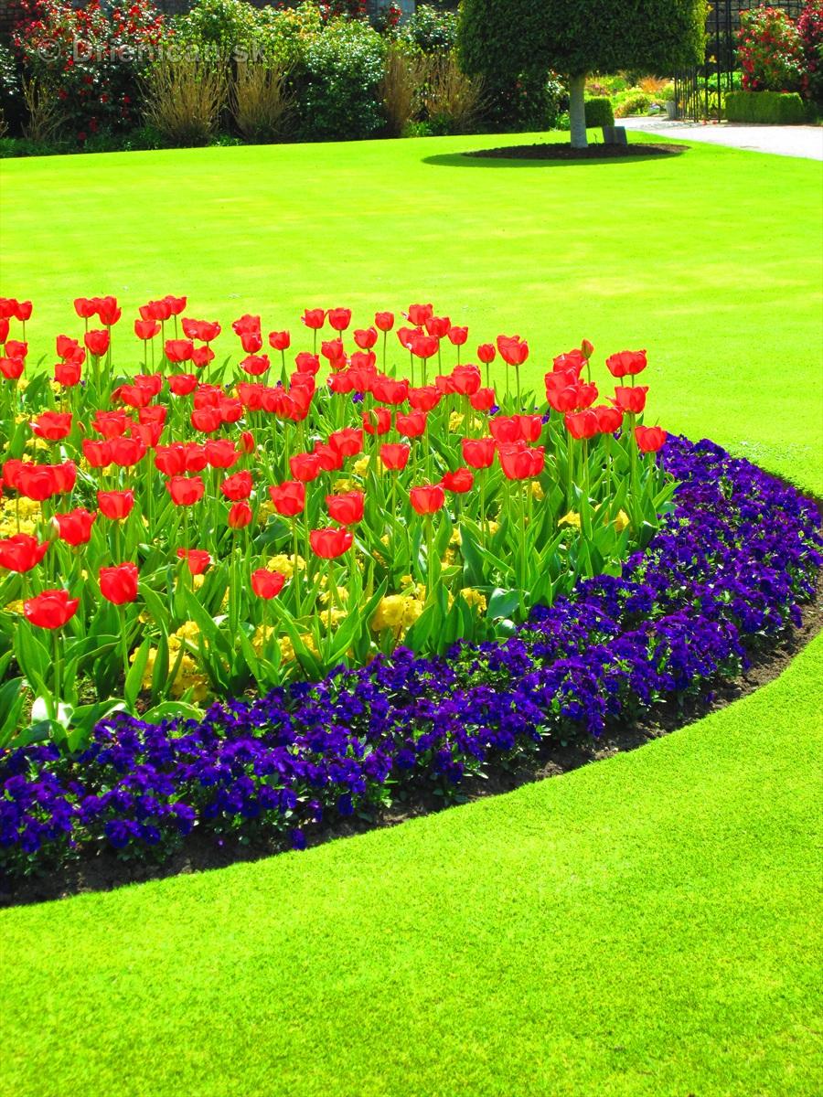 Spring in Powerscourt Gardens_63