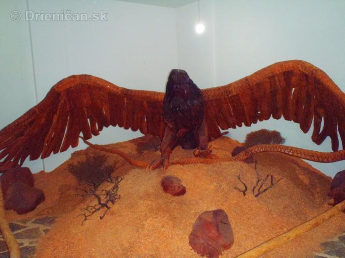 Múzeum drevených sôch