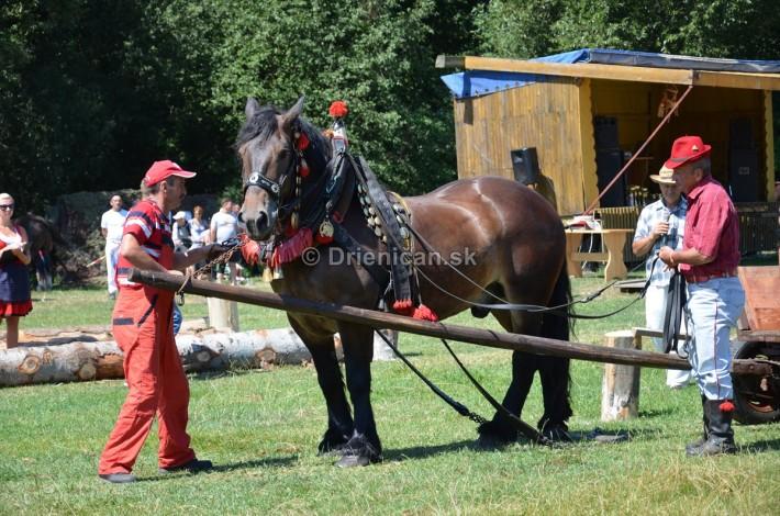 furmanske preteky o zlaty kantar 2013 Lutina_063