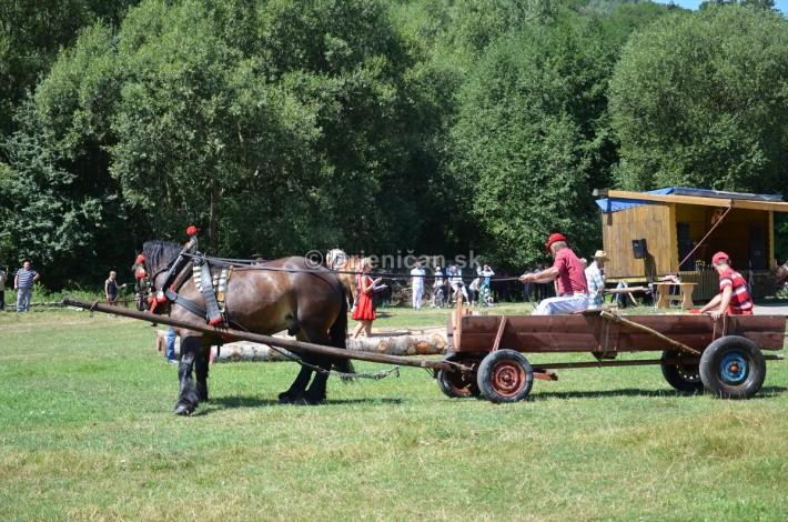 furmanske preteky o zlaty kantar 2013 Lutina_064