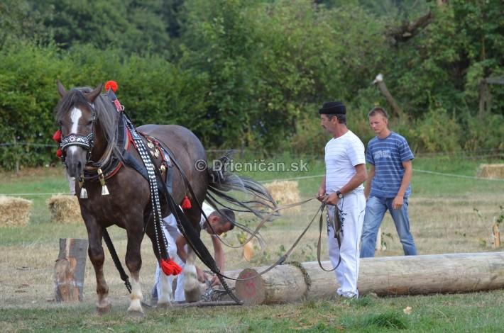 furmanske preteky o zlaty kantar 2013 Lutina_089