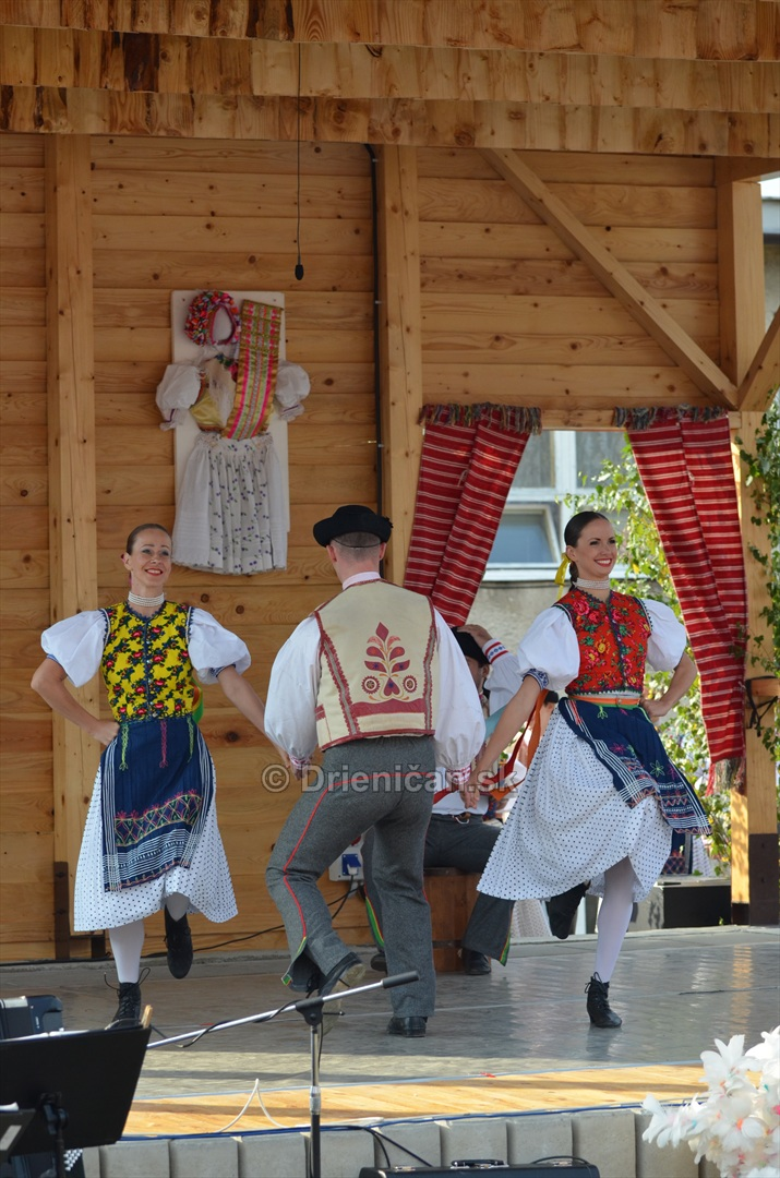 Festival folkloru Rusinov Bajerovce_035