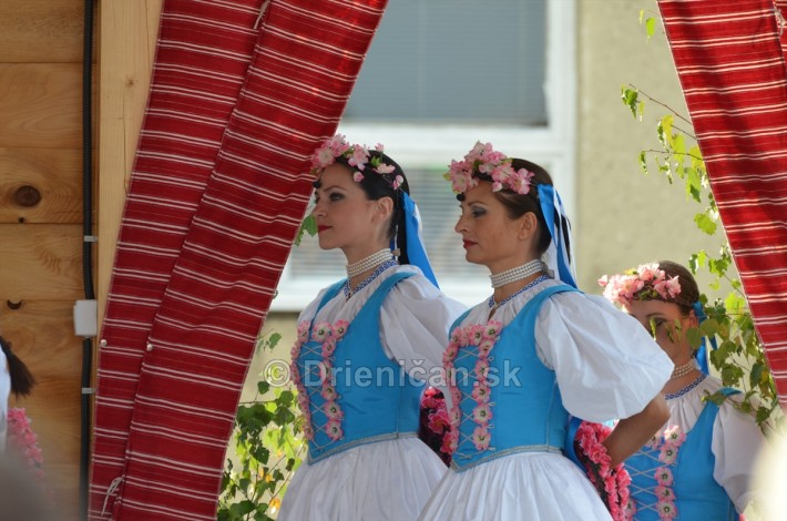 Festival folkloru Rusinov Bajerovce_049