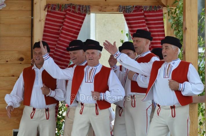 Festival folkloru Rusinov v obci Bajerovce_39