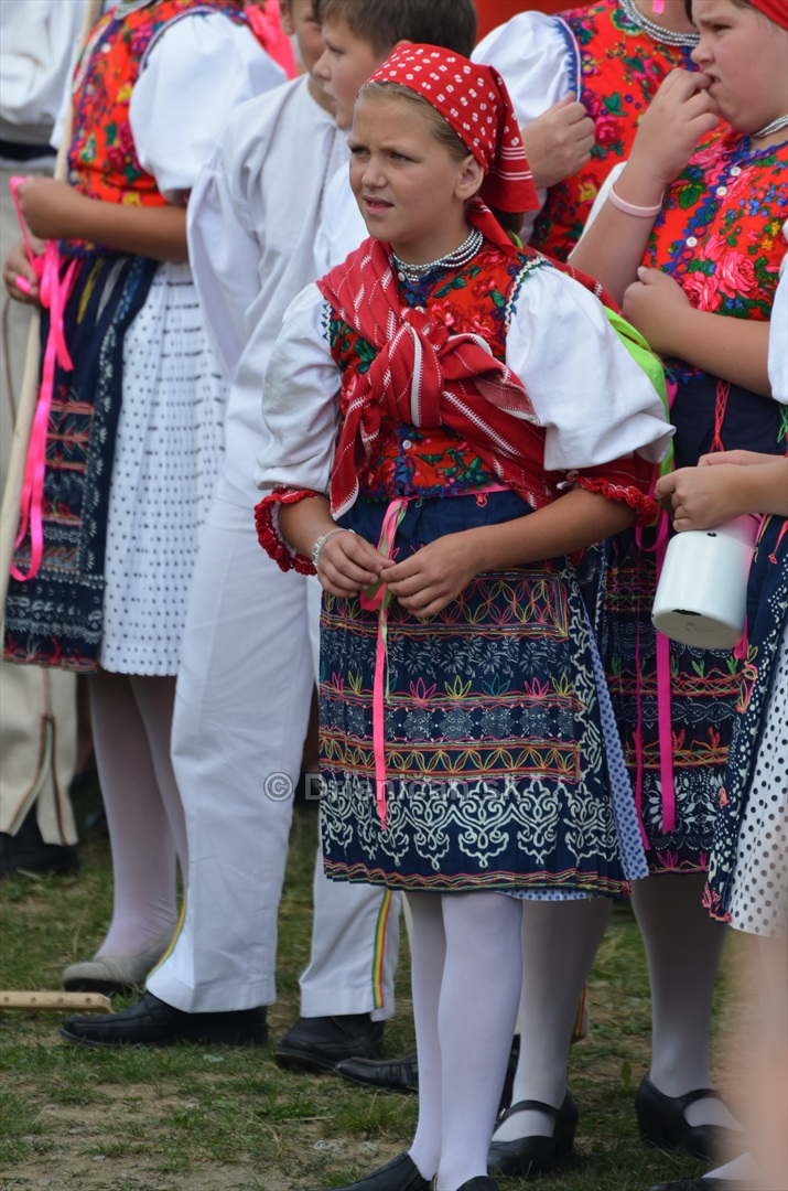 Festival folkloru Rusinov v obci Bajerovce_58