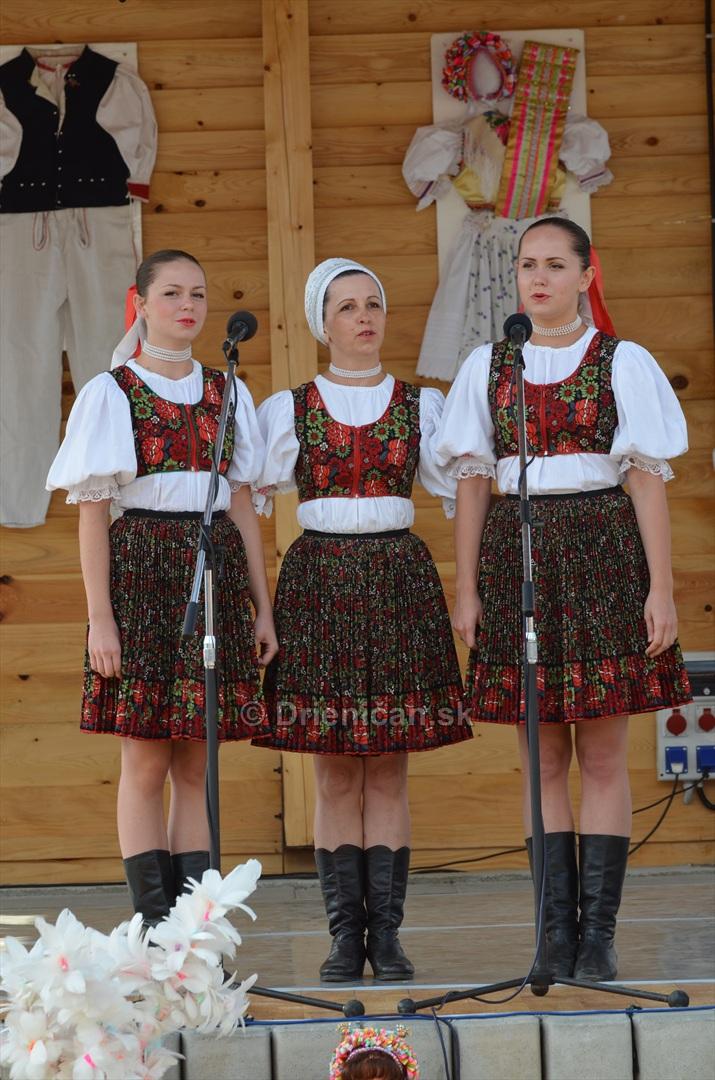 Festival folkloru Rusinov v obci Bajerovce_71
