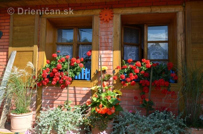 drienica kvety balkony_13