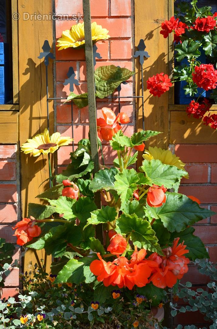 drienica kvety balkony_14