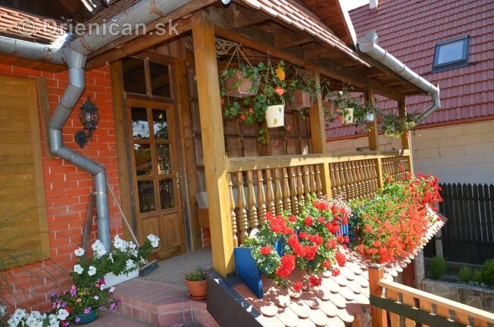 drienica kvety balkony_16