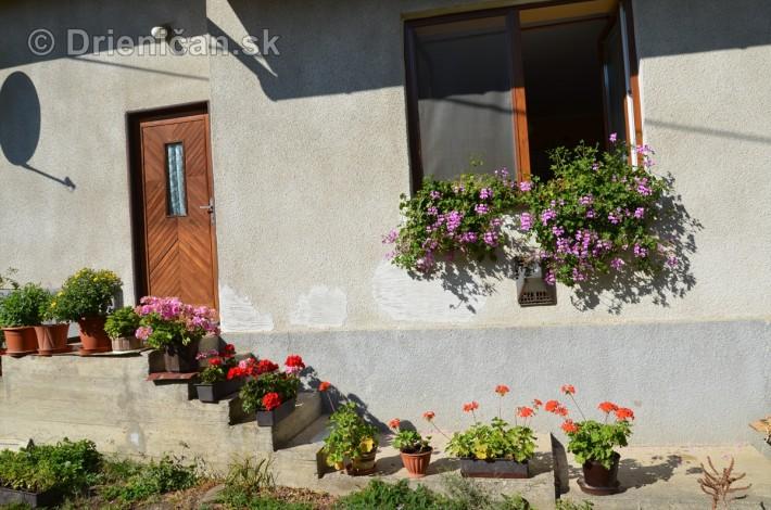 drienica kvety balkony_37