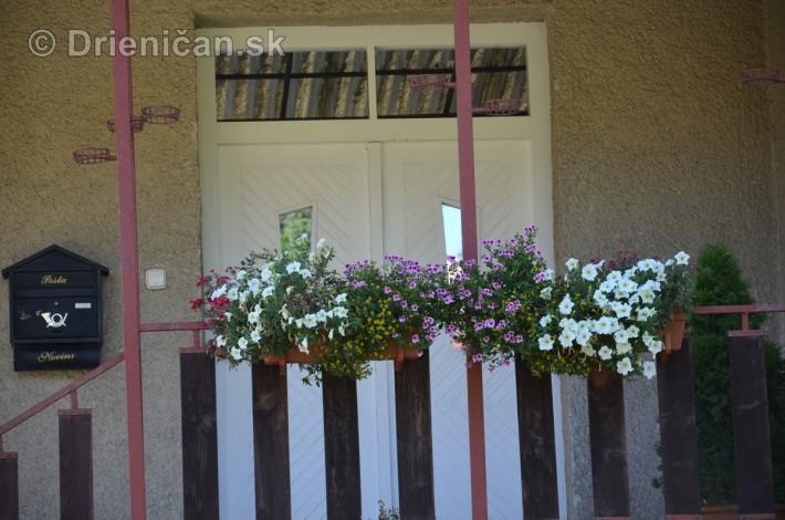 drienica kvety balkony_48