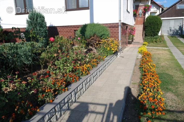 drienica kvety balkony_50