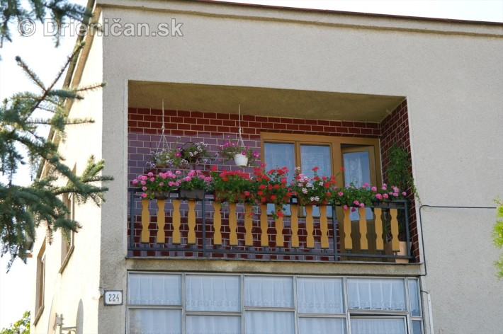 drienica kvety balkony_62