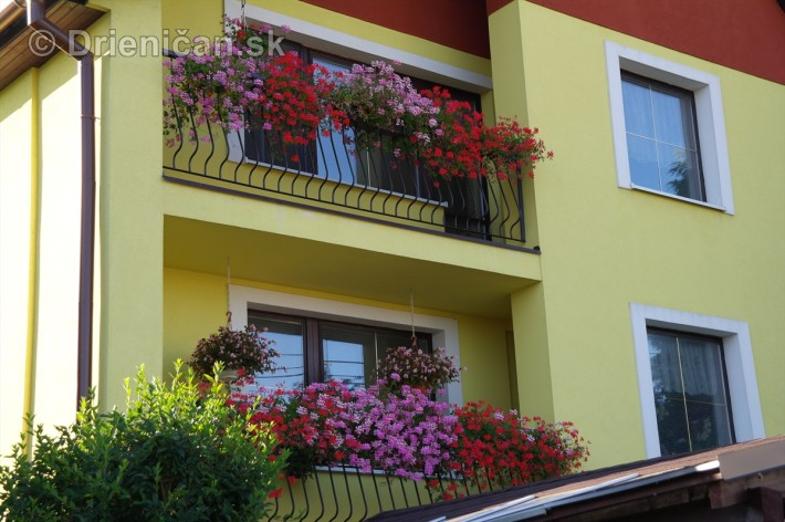drienica kvety balkony_66