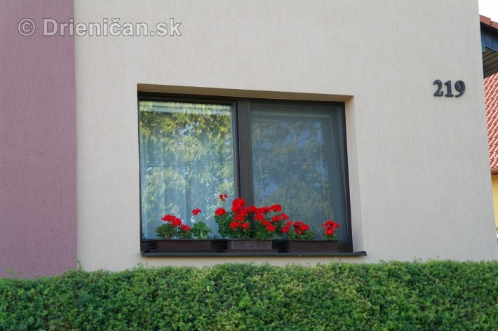 drienica kvety balkony_67