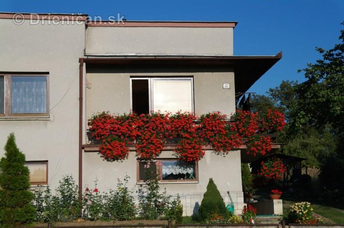 drienica kvety balkony_81