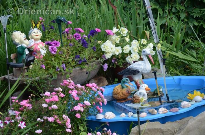 kvetinove zahradky drienica_1