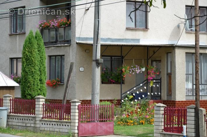 kvety balkony drienica ulica_2