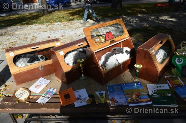 Jesenny Kulturny Festival v Sabinove_18