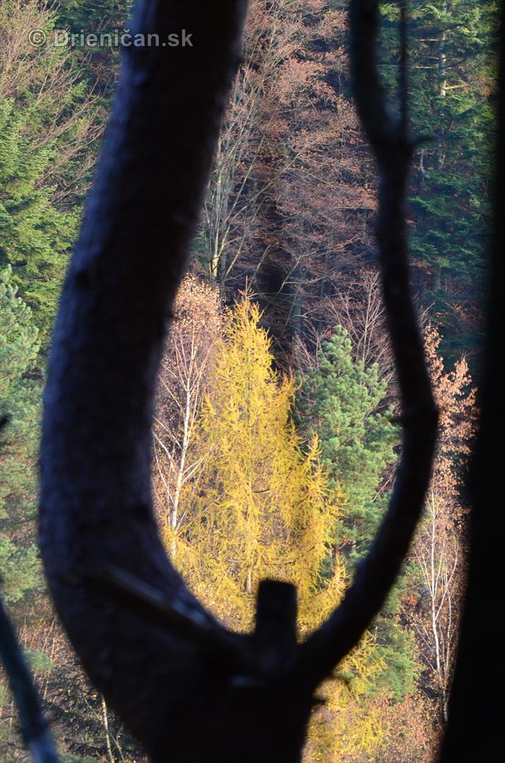 drienica v novembri_02