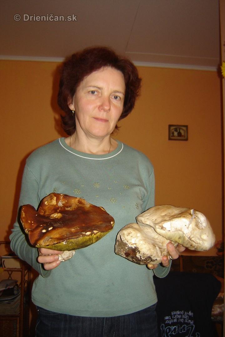 Novembrové hríby pani Eleny