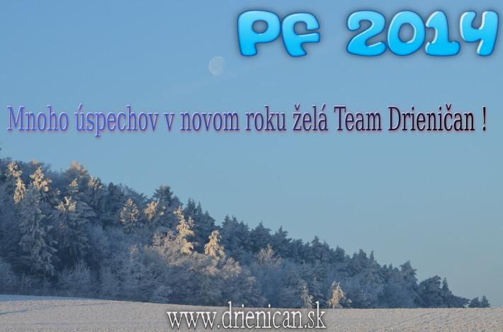 Drienica pf 2014