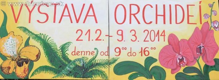 Výstava orchideí-21.2 - 9.3.2014 denne od 9:00 do 16:00