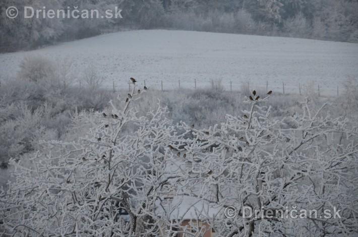 drienica zima sneh_01