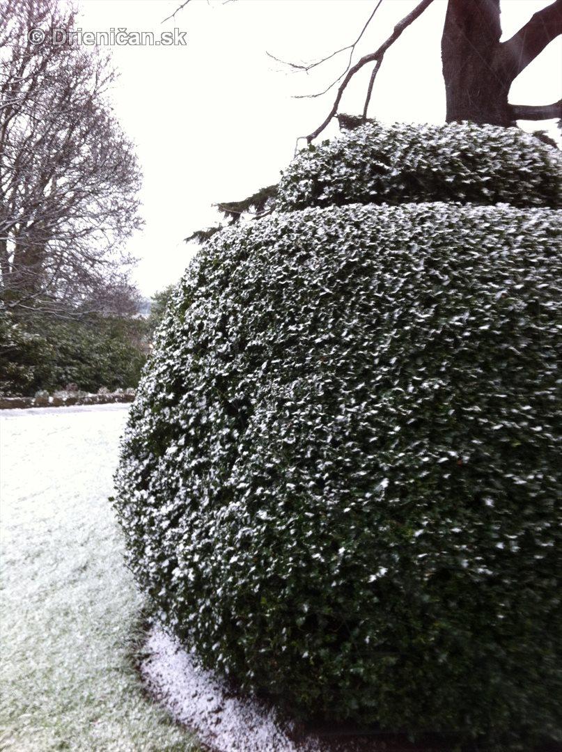 dublin snow_3