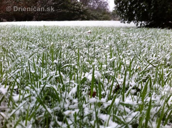 dublin snow_4