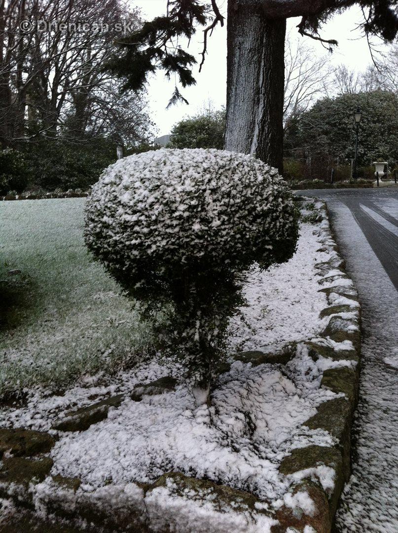 dublin snow_5